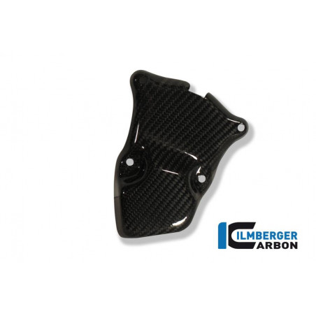 Ignition Rotor Cover Carbon BMW S 1000 RR Stocksport / Racing (2010-2019)