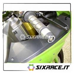 Stabilizzatori / Tamponi Manubrio Kawasaki (Tutte)