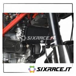 griglia Protezione Radiatore Olio Ducati Hypermotard 1100 Evo And Evo Sp (Not St