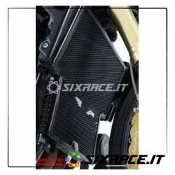 griglia protezione radiatore - Triumph Speed Triple 05 (titanio)