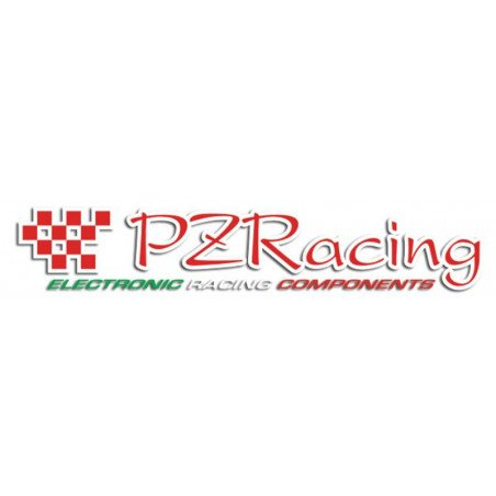 SSUSB220 Caricabatteria 220V  PZ RACING