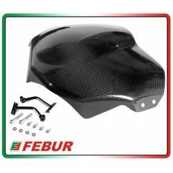 Cupolino in carbonio Yamaha FZ6 2003-2009