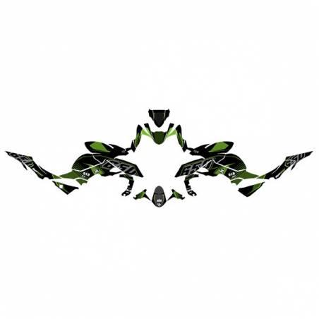 Kit Grafiche Nero-Verde Kawasaki Z 650 17/18