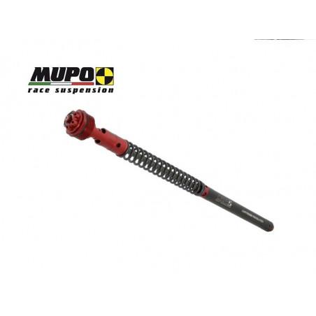 CARTUCCIA MUPO LCRR DUCATI 899 13-15